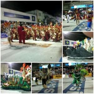 Academicos Carnaval 2013